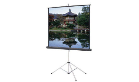 Dalite tripod screen